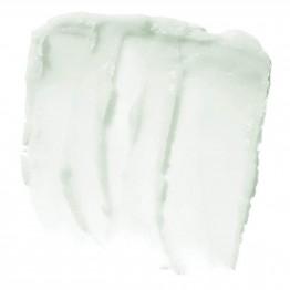 e.l.f. Lip Exfoliator - Mint Maniac